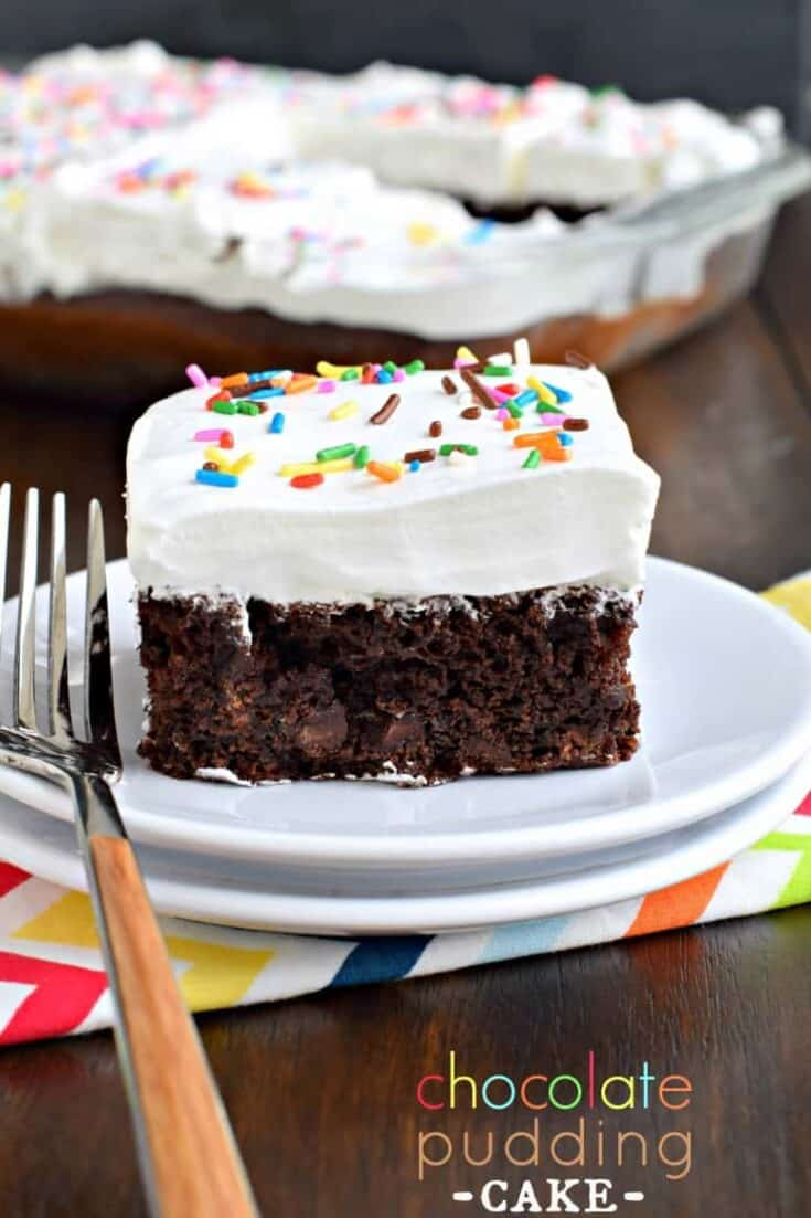 Moist, dense, Chocolate Pudding Cake recipe with 5 ingredients!
