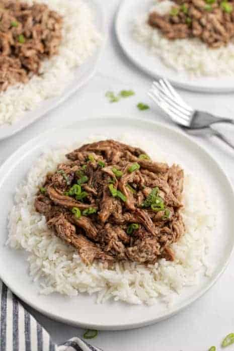 White plate with white rice and shredded balsamic pork tenderloin topped with green onions.