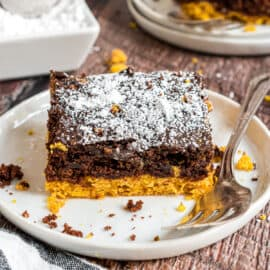 You'll love this easy Chocolate Pumpkin Cake recipe for a quick dessert. Super moist and flavorful, this snack cake is delicious served warm or room temperature.