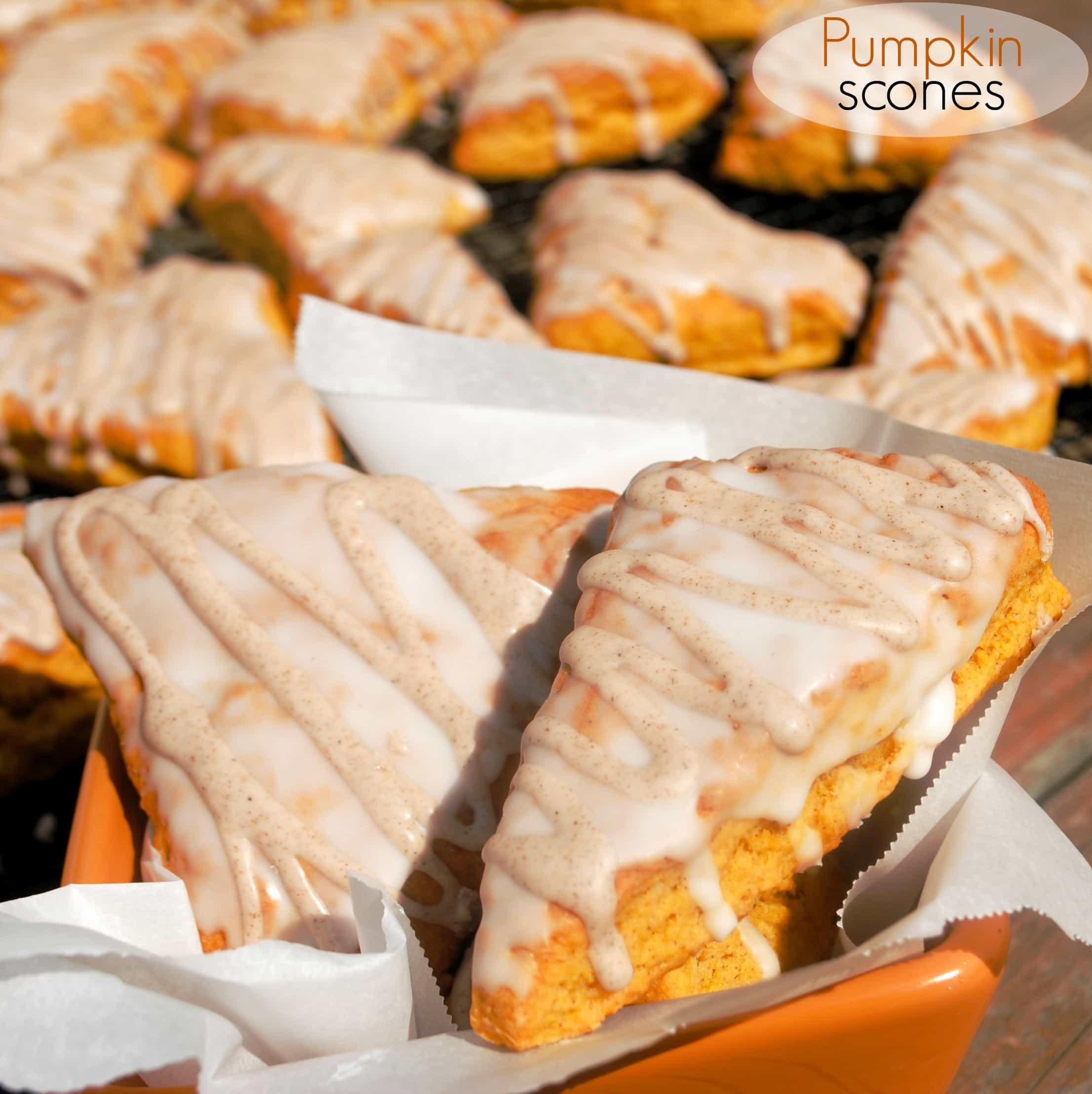 Pumpkin Scones: copycat Starbucks pumpkin scones, better than the real ...