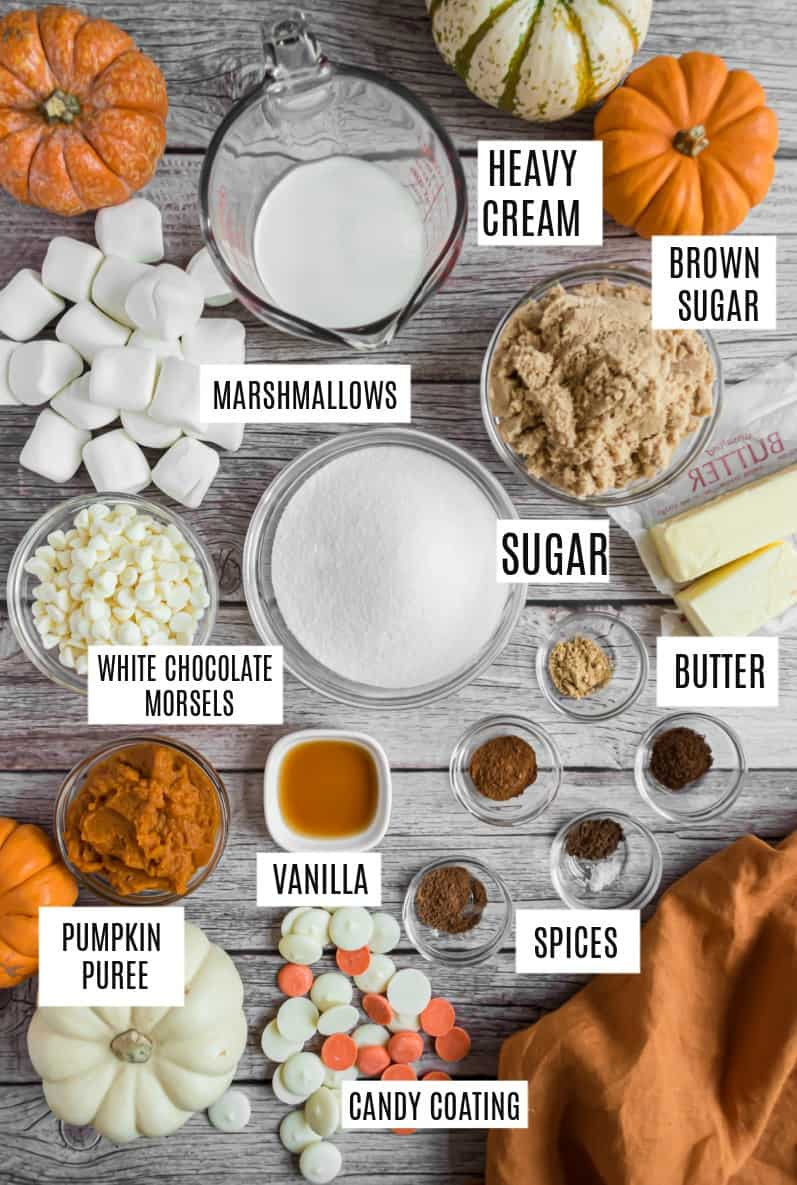 Ingredients needed to make pumpkin spice truffles.