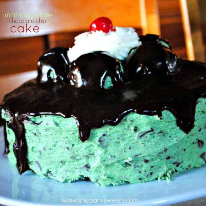 Chocolate Cake with Mint Chip Frosting
