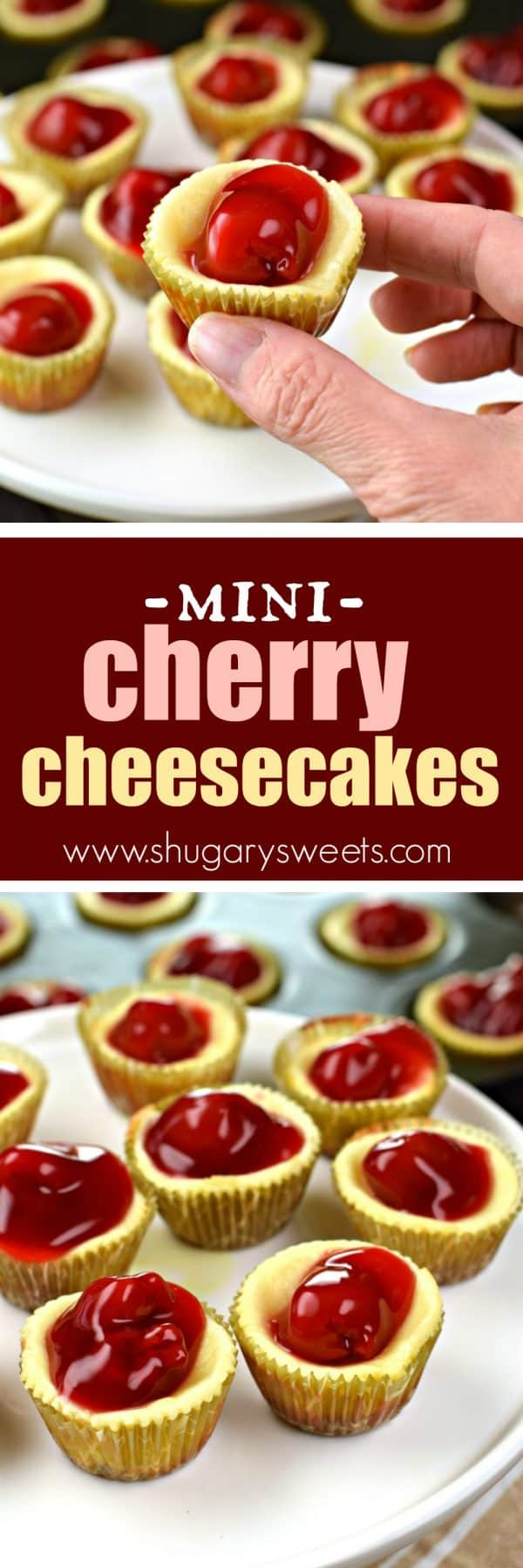 These Mini Cherry Cheesecakes show up at all holidays in our family. Just like an original cheesecake, these bite sized treats are packed with creamy flavor! #cheesecake #holiday #cherrycheesecake