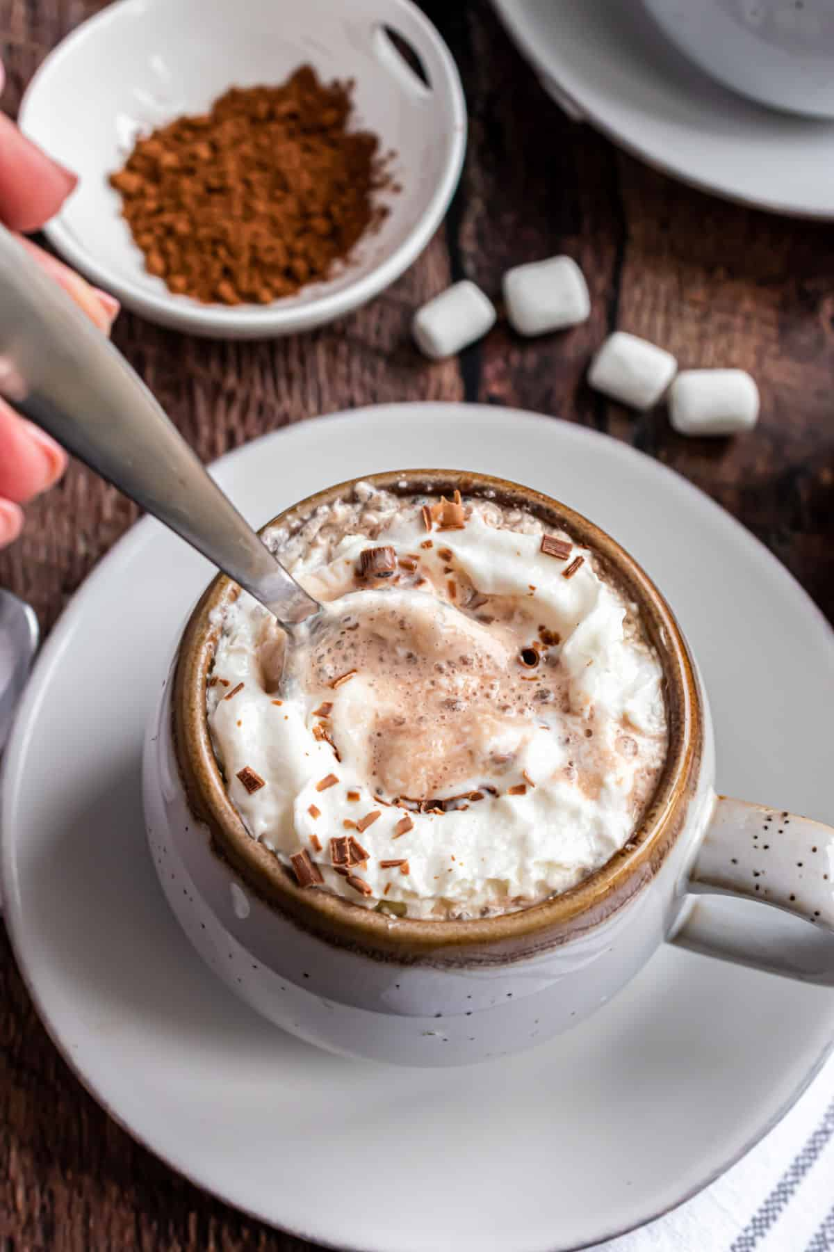 Homemade hot cocoa in a ceramic mug topped with whipped cream.