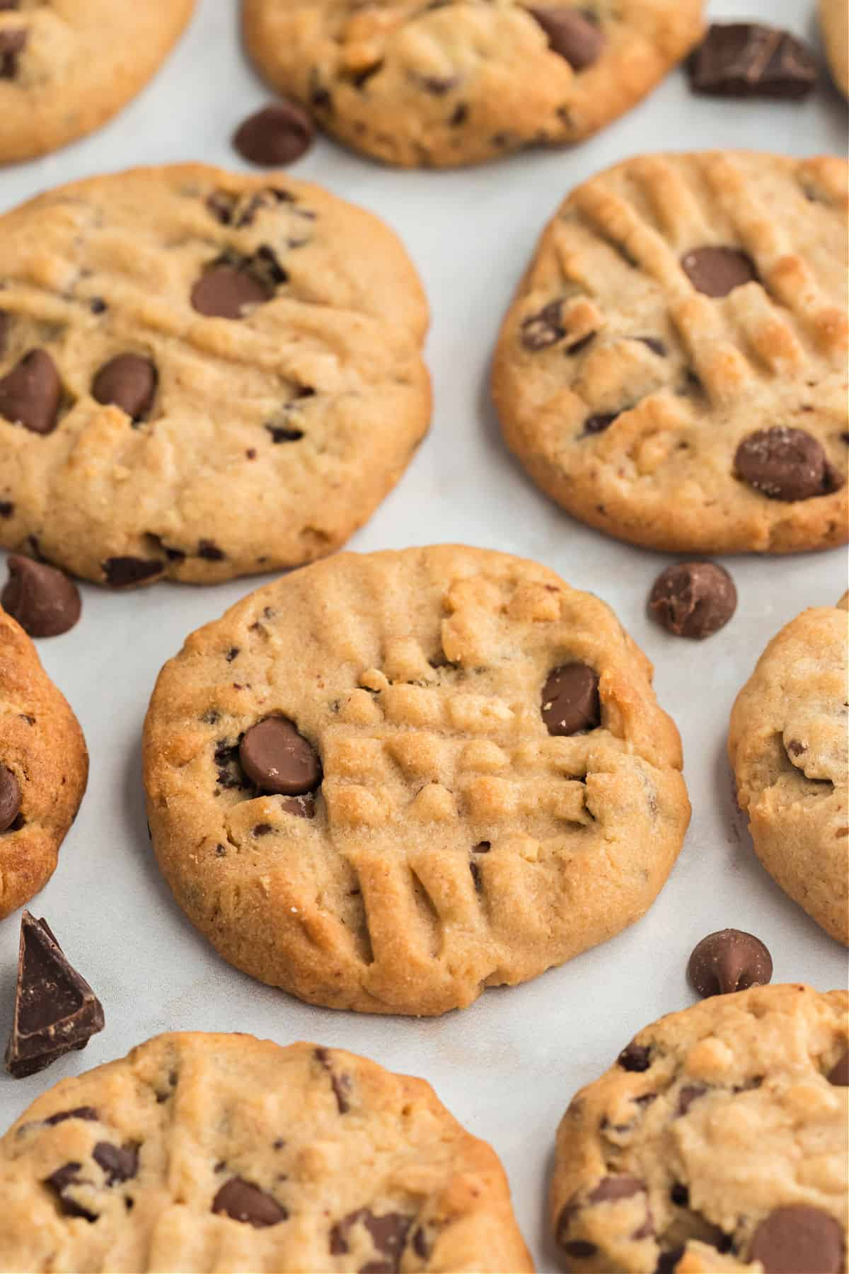 Peanut butter cookies with chocolate chips cooling on a piece of parchment paper.