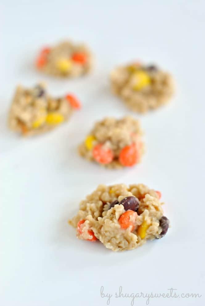 peanut-butter-no-bake-cookies-2