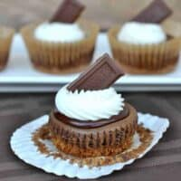 S'more Cheesecakes