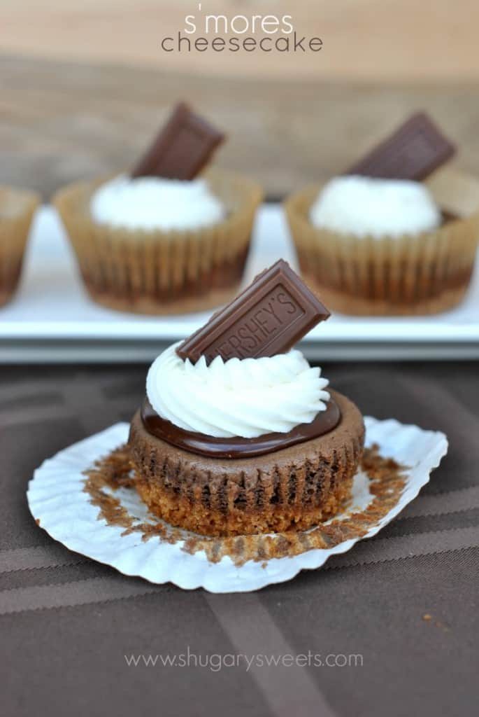 S'mores Cheesecakes