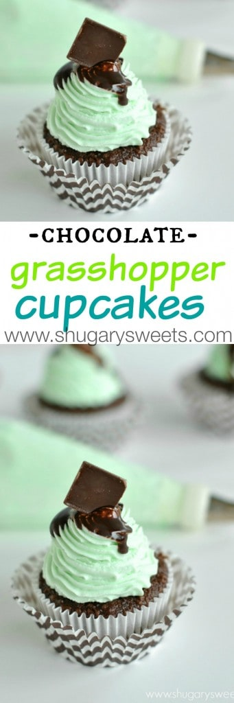 Dark chocolate cupcakes with Grasshopper frosting. A fresh, minty, whipped cream frosting!