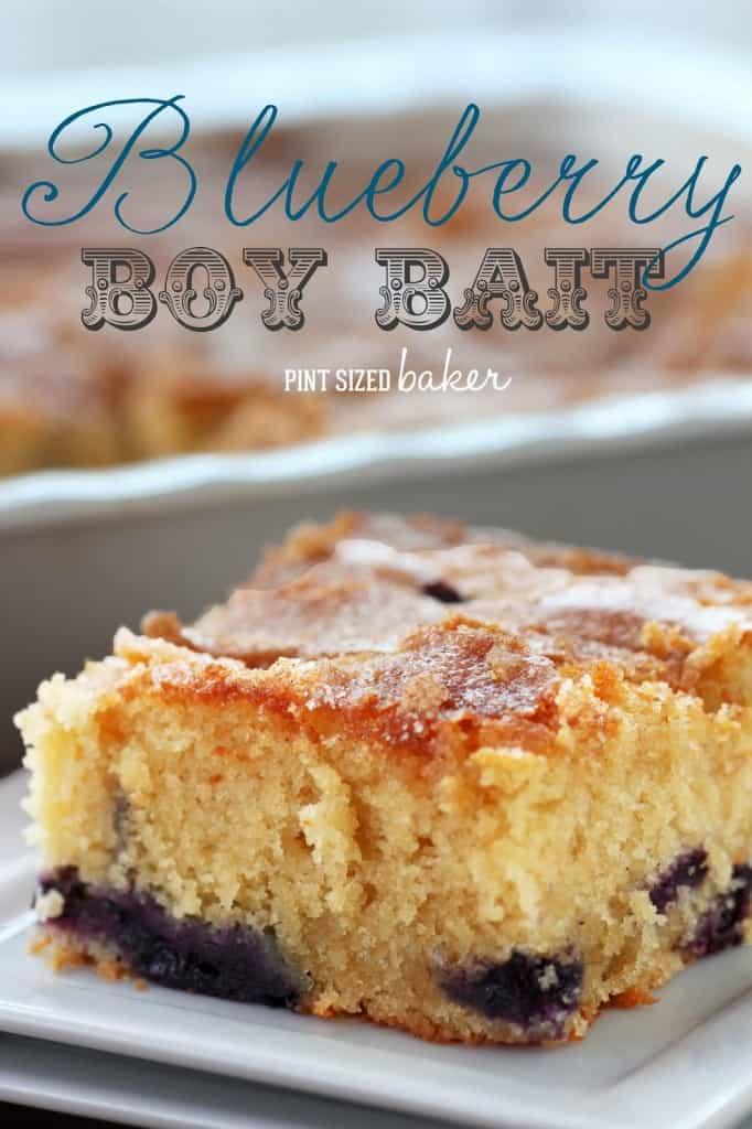 1 ps Bluberry Boy Bait (8)
