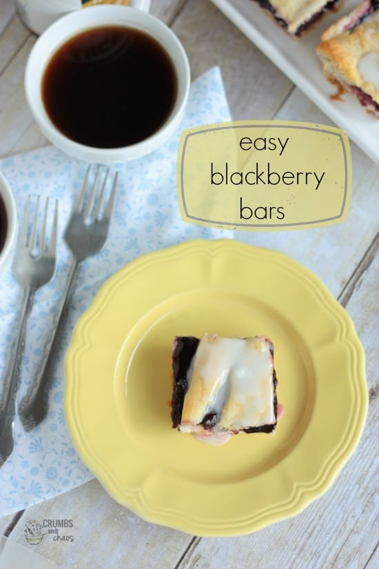 Easy Blackberry Bars by Crumbs and Chaos