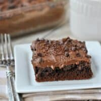 Frosted Gooey Chocolate Cake Bars