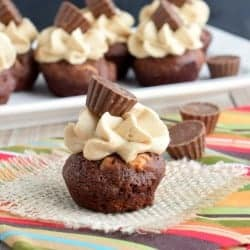peanut-butter-brownie-bites-2