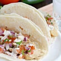 Slow Cooker Tequila Chicken Tacos Recipe