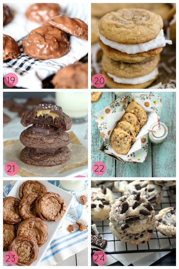 24 Irresistible Cookie Recipes to fill your cookie jar! Sweet, chewy, fruity, fudgy...you're sure to find something you love!