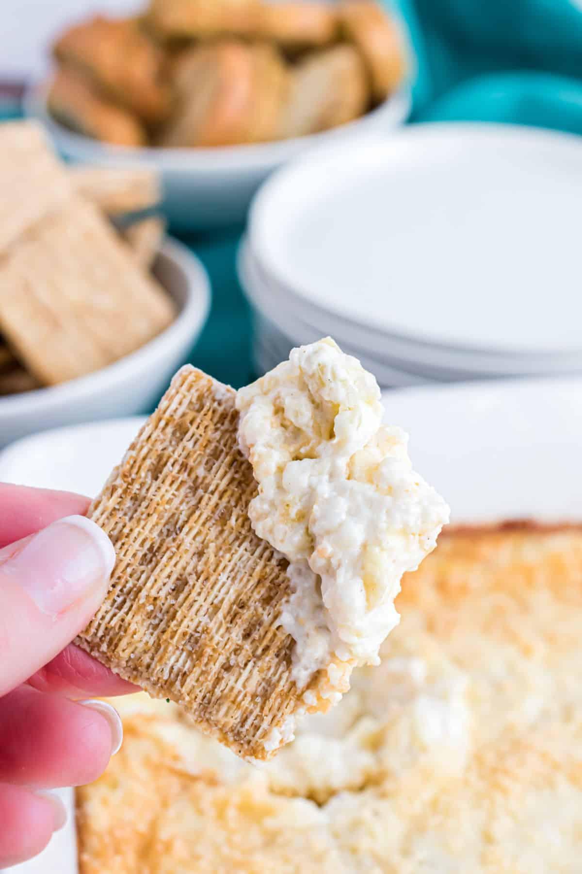 Warm artichoke dip scooped with a triscuit cracker.