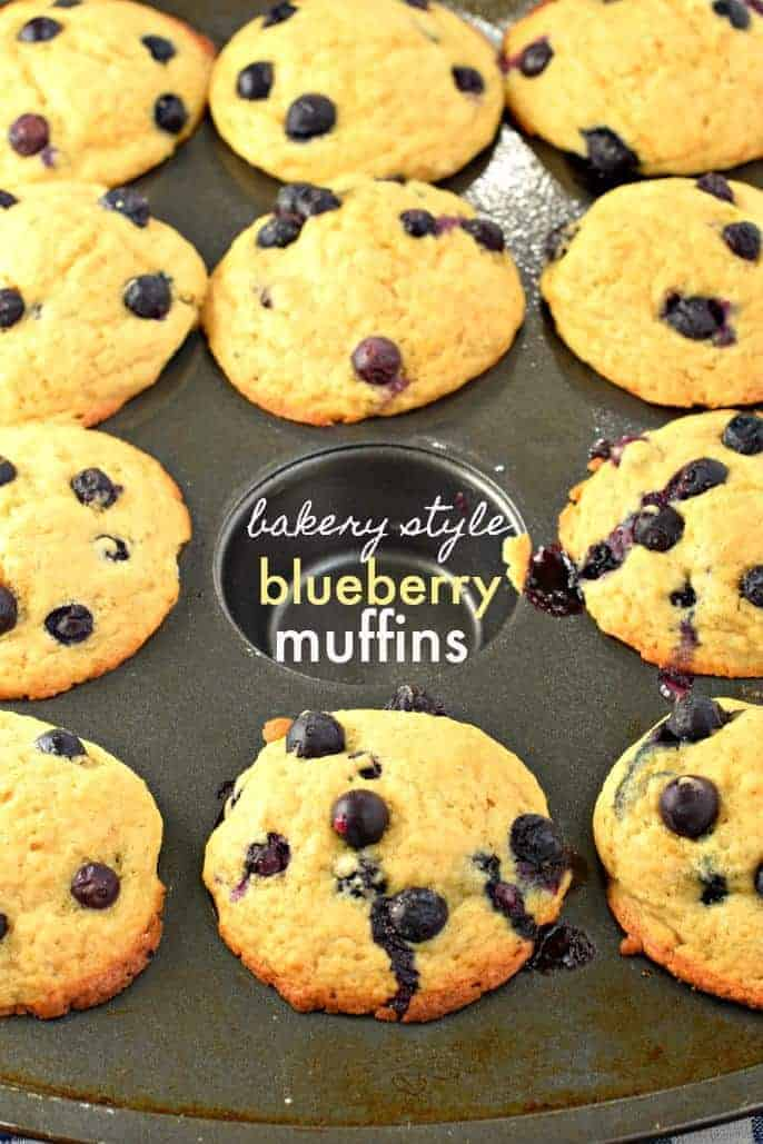 Bakery Style Blueberry Muffins - Shugary Sweets