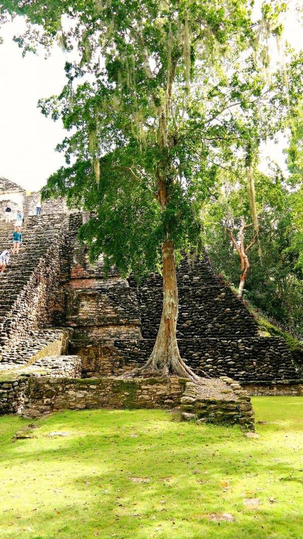 Mayan Ruins with #princesscruises #sponsored #travel #vacation #wanderlust #mexico #costamaya