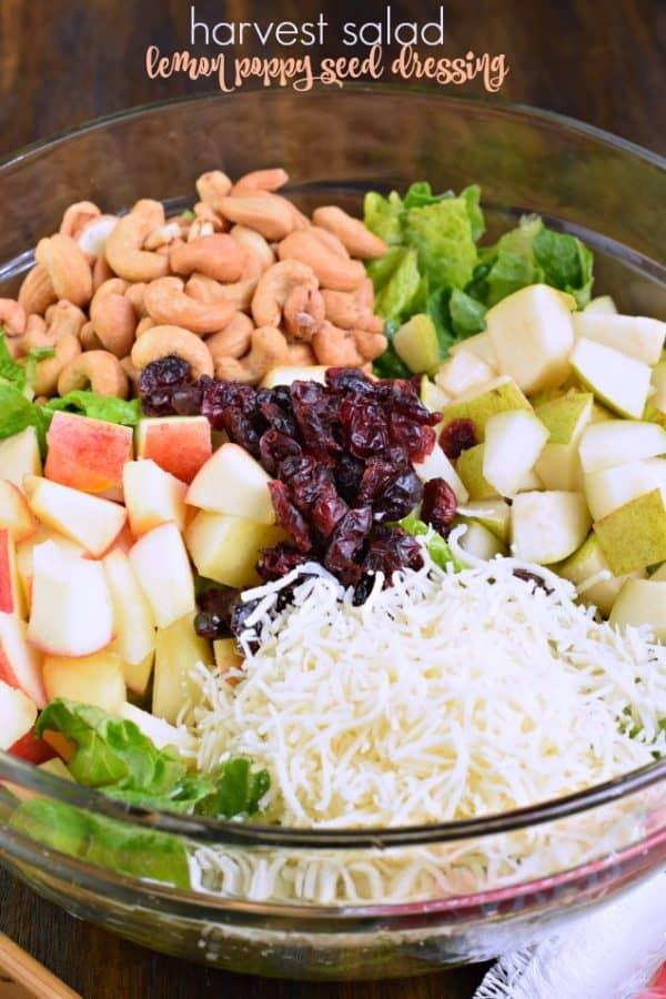 Harvest Salad, Lemon Poppy Seed Dressing recipe