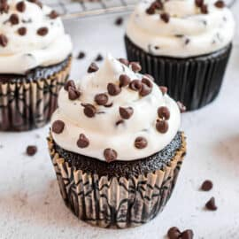 Chocolate cupcake with chocolate chip cheesecake frosting.