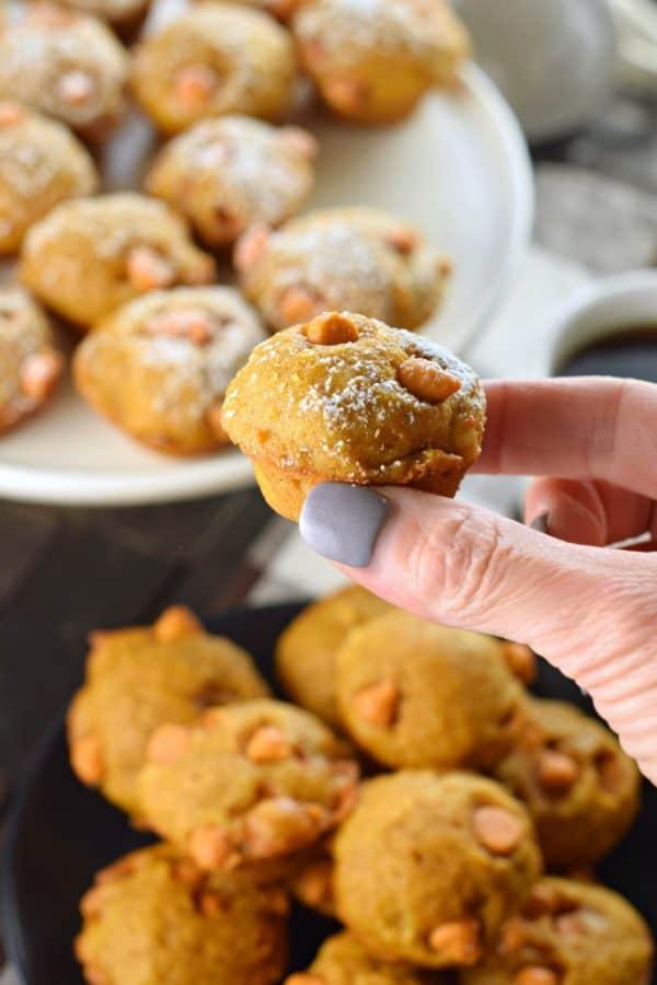 Bite sized mini Pumpkin Butterscotch Muffins