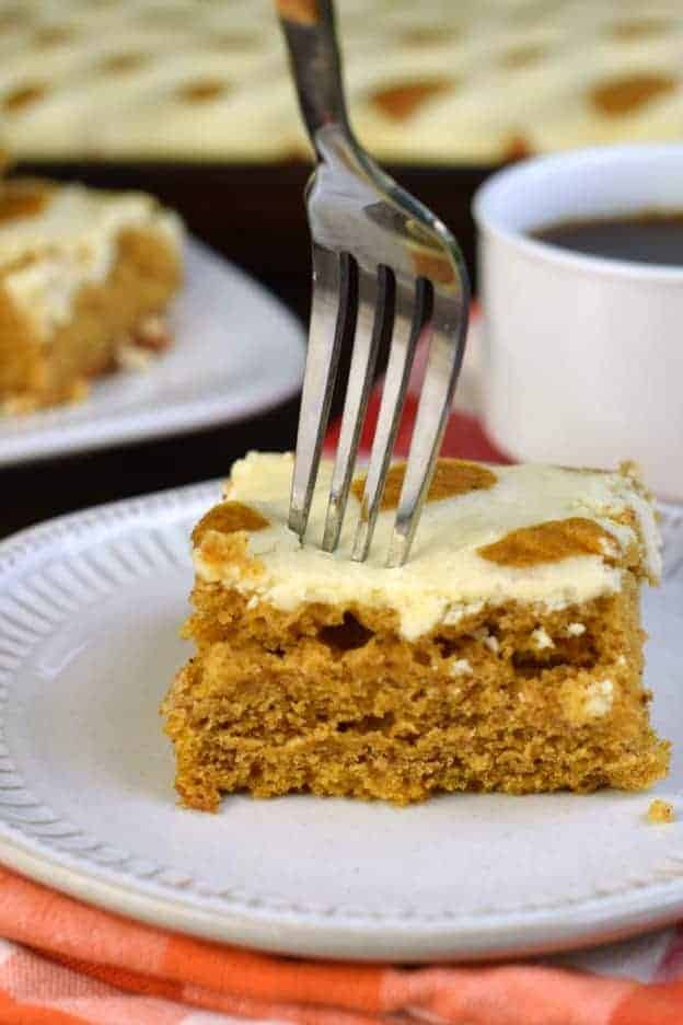 The best Pumpkin Cheesecake Bars recipe is here, packed with flavor and easy to make! You'll love the moist pumpkin cake with sweet cheesecake piped throughout! The perfect fall dessert.