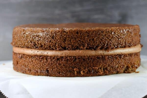 Two even layers of German Chocolate Cake
