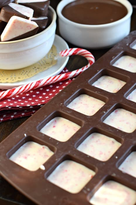 The BEST Peppermint Bark recipe is made with good quality chocolate, and dipped to perfection. You'll love this Christmas treat for yourself or to give as a gift!