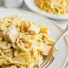 Chicken tetrazzini scooped onto a white dinner plate with silver fork.