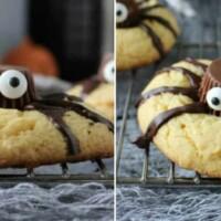 EASY Halloween Spider Cookies - Halloween project & treat all in one!