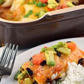 Chicken avocado enchilada served on a plate with cilantro lime rice.