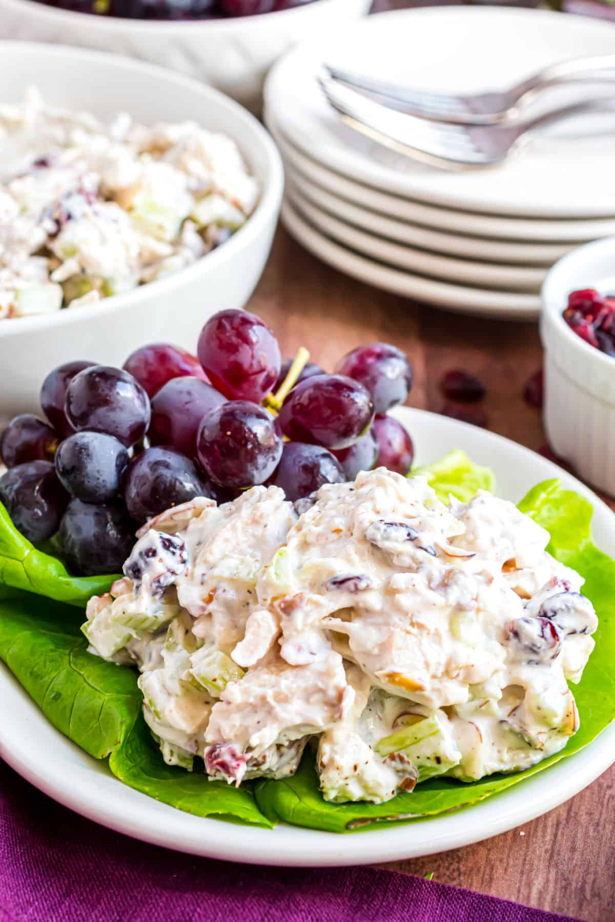 Chicken salad served on a bed of lettuce with red grapes on plate.