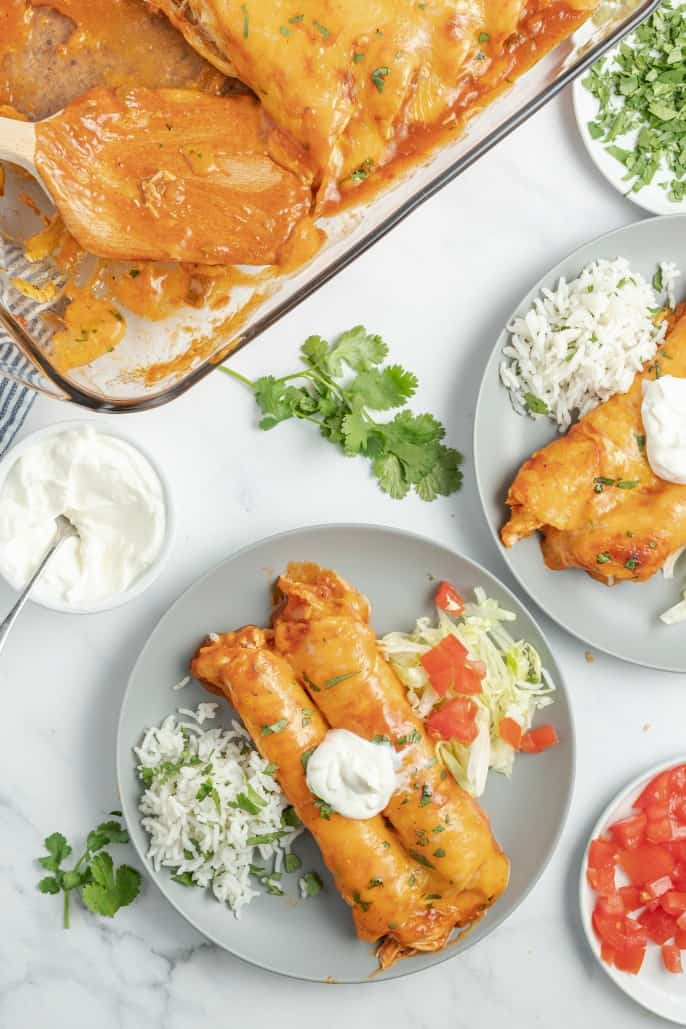 Chicken enchiladas topped with sour cream, served on a gray plate with cilantro lime rice, lettuce, and tomatoes.
