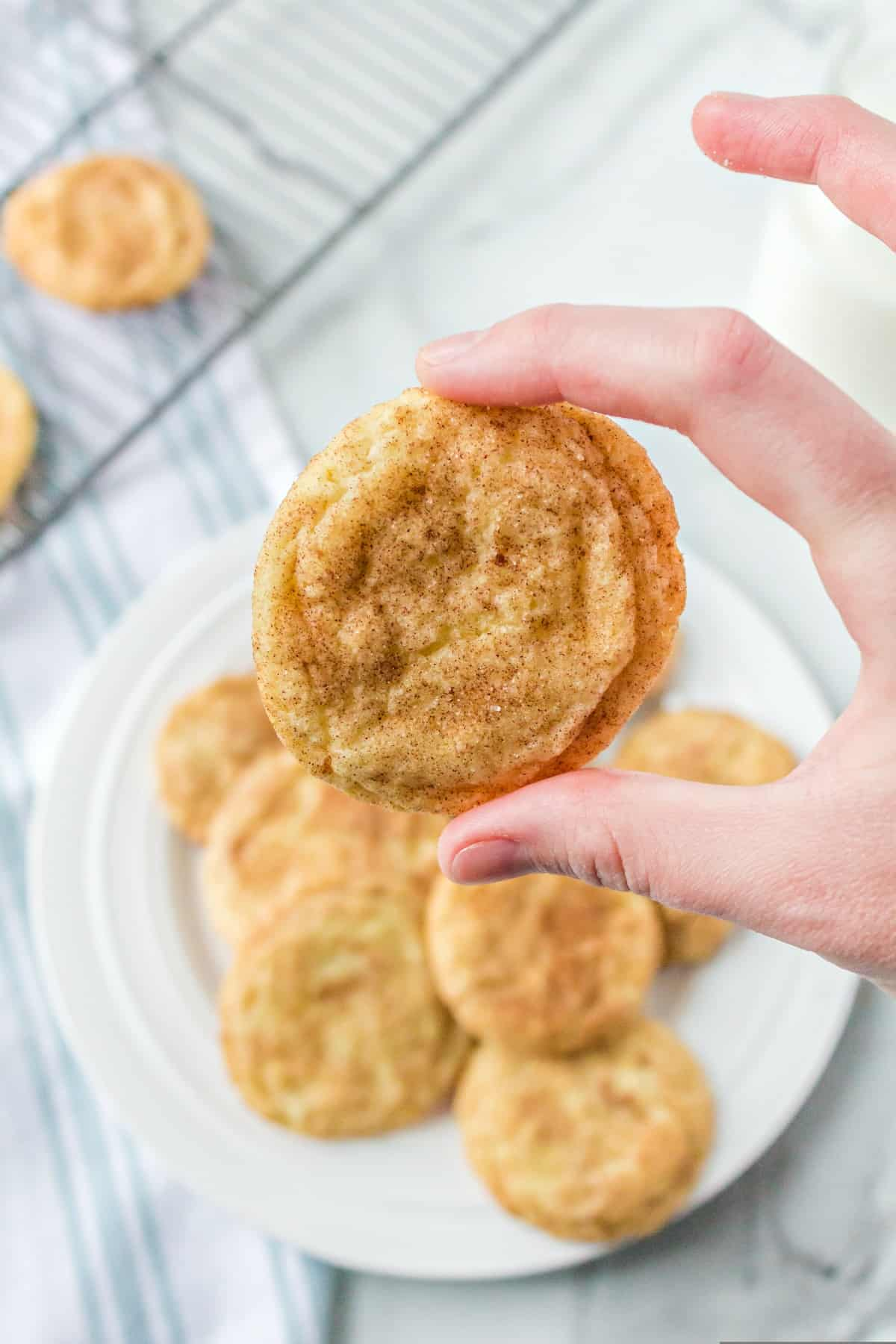 Hand holding snickerdoodle cookie above a plate of cookies.