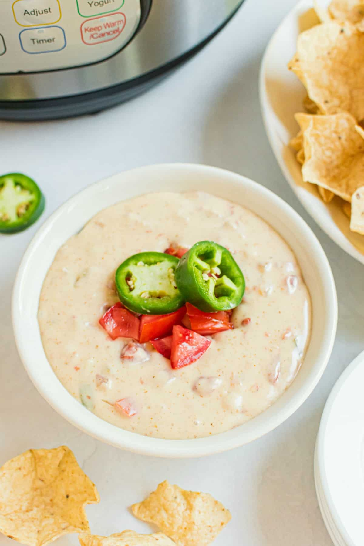 White cheddar queso in a bowl with tortilla chips on side.