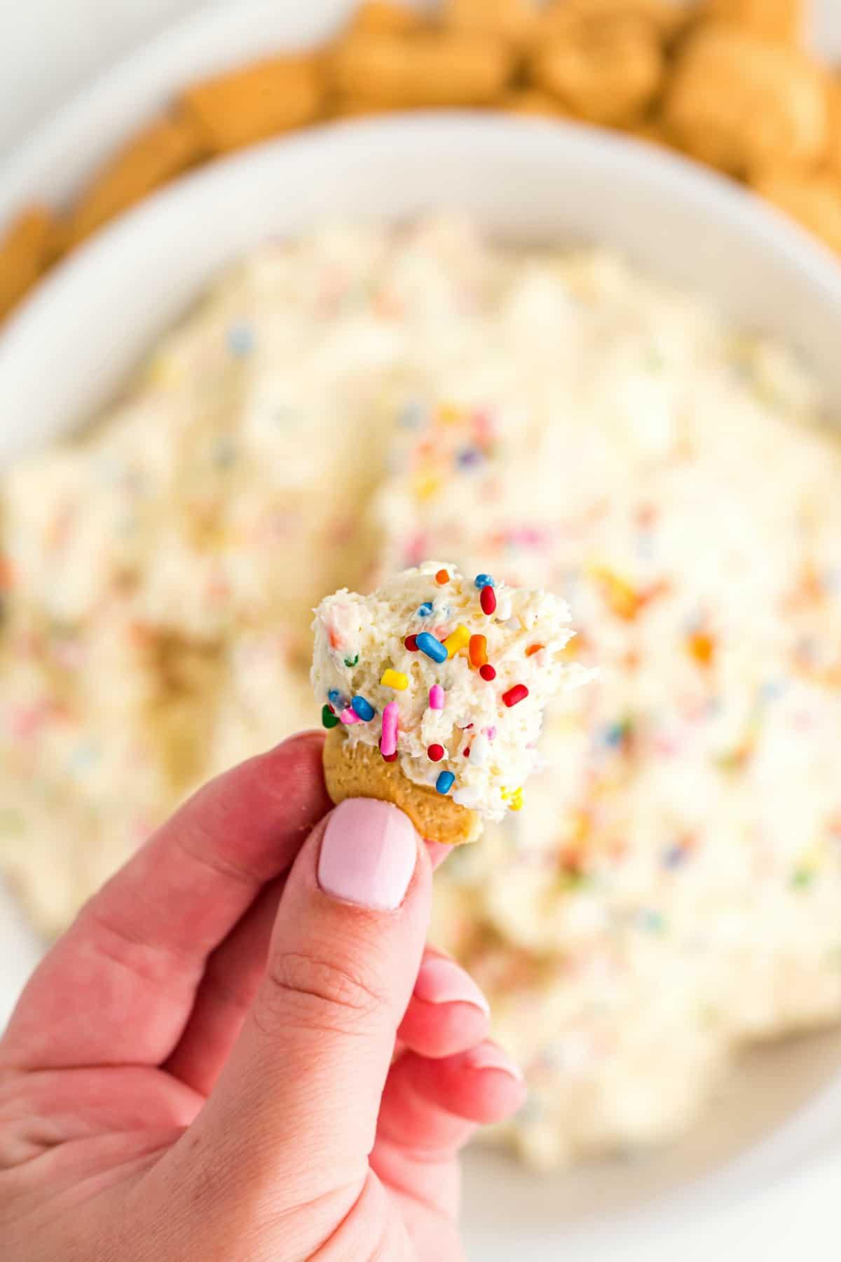 Animal cracker dunked in funfetti cake batter dip.