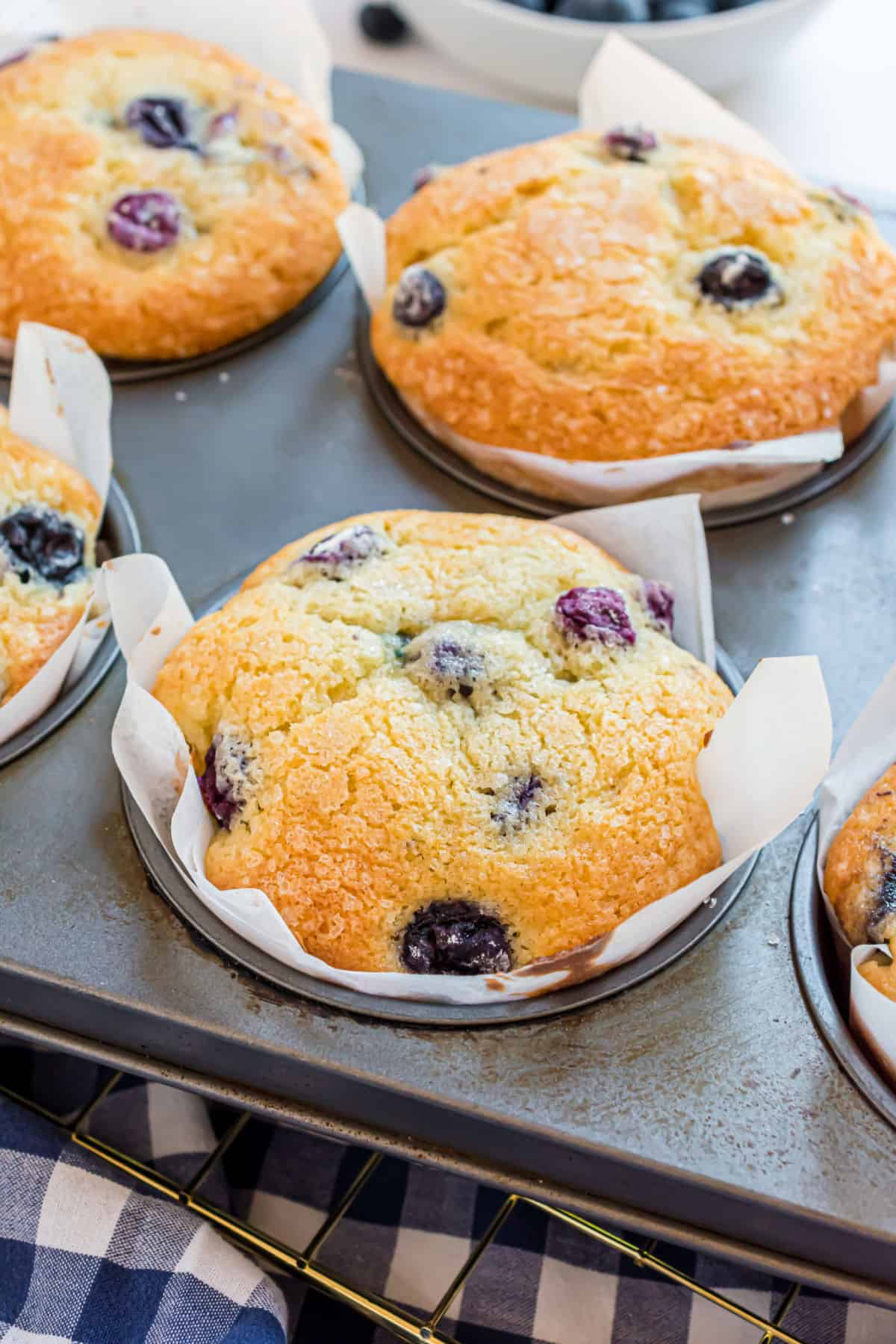 Blueberry muffins in muffins pan after baking.