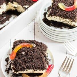 Vanilla dirt pudding cake with gummi worms.