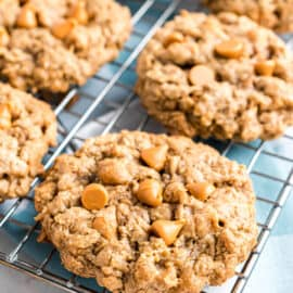 Soft, chewy and bursting with butterscotch, Oatmeal Scotchies are oatmeal cookies at their best. Cinnamon sugar flavor and a lightly crisped exterior make these extra delicious!