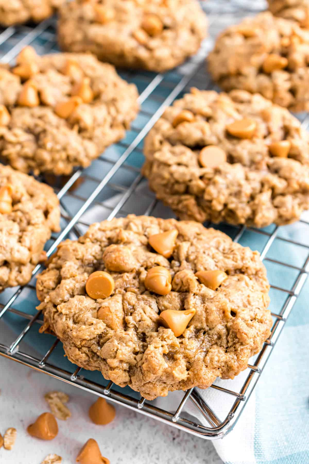 Oatmeal Scotchie Cookies cooling on a wire rack with extra butterscotch morsels.