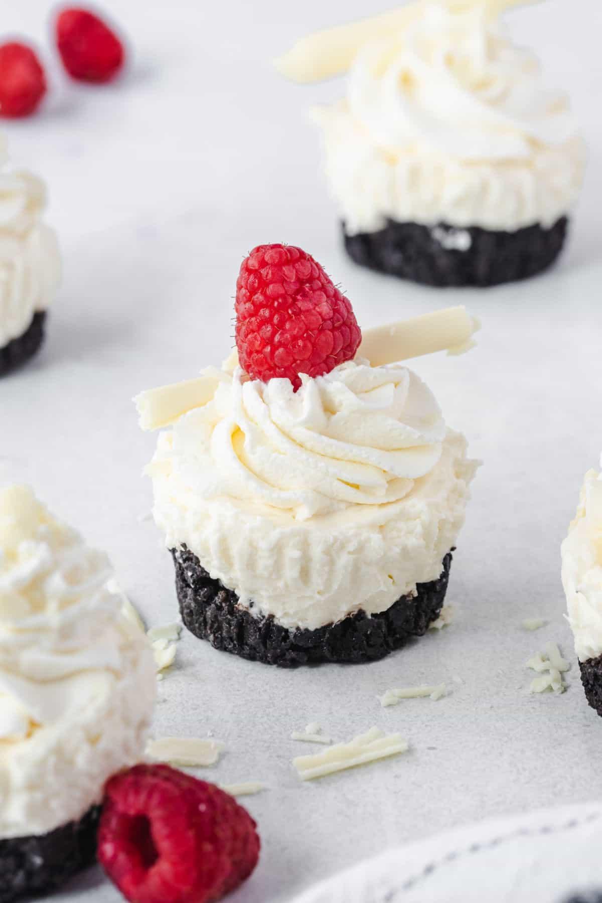 Mini cheesecake with oreo crust and a raspberry on top.